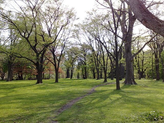 北大植物園